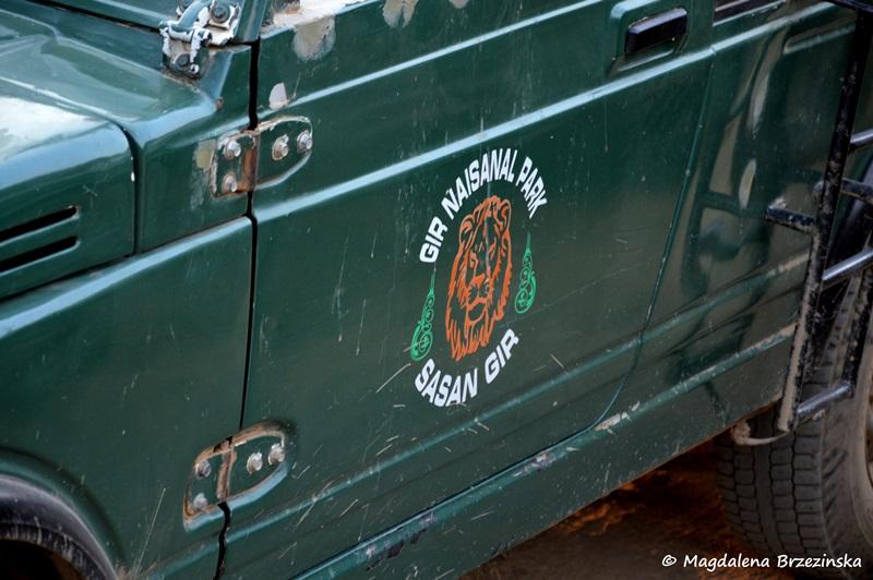 Jeep straży leśnej Parku Narodowego Gir ©Magdalena Brzezińska