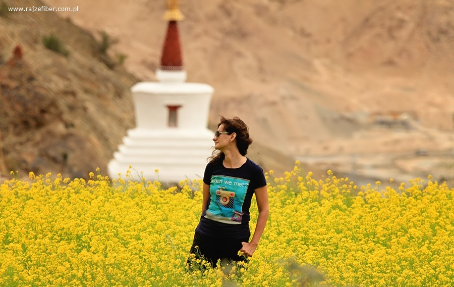 """I znowu w mojej ulubionej """"musztardzie""""! Hemis, Ladakh, Indie, lipiec 2016"""