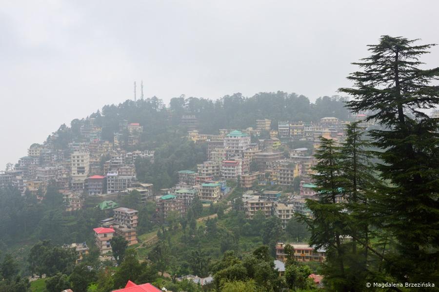 McLeod Ganj, Indie, lipiec 2016 © Magdalena Brzezińska
