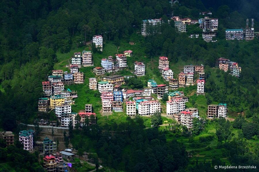 fot. Shimla © Magdalena Brzezińska, Indie 2016
