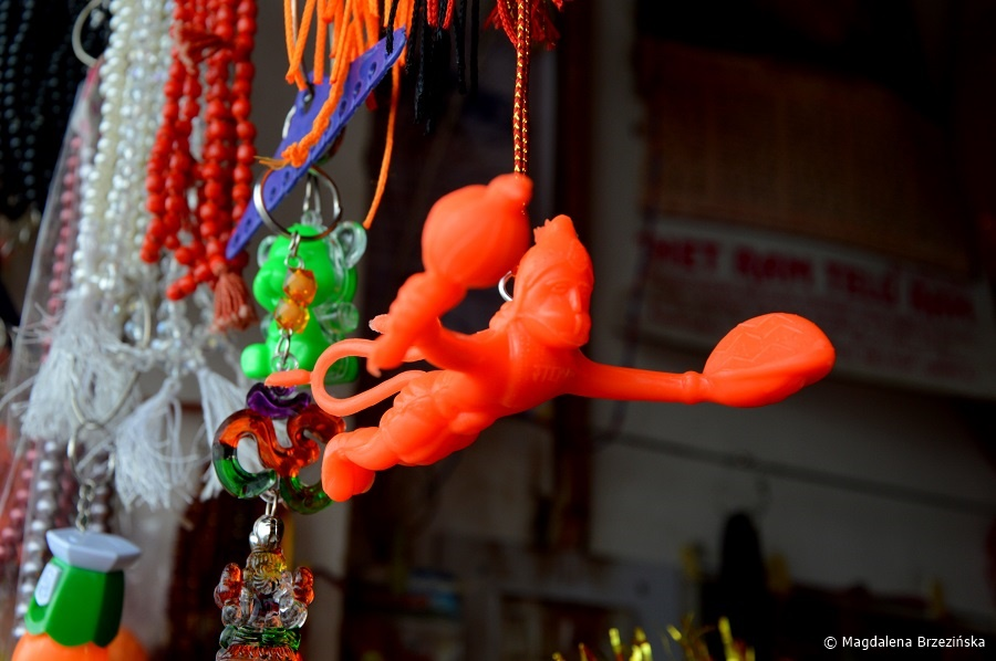 fot. Hanuman © Magdalena Brzezińska, Indie 2016