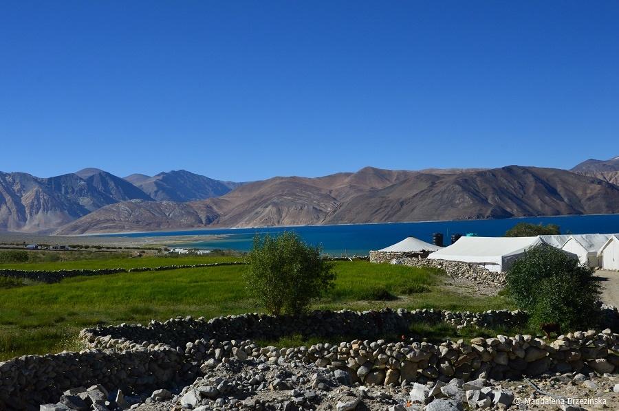 fot. Pola namiotowe nad Pangong Tso © Magdalena Brzezińska, Ladakh, Indie 2016 Pola namiotowe nad Pangong Tso © Magdalena Brzezińska, Ladakh, Indie 2016