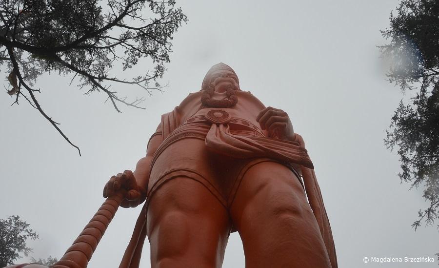fot. Posąg Hanumana w świątyni Jakhoo © Magdalena Brzezińska, Indie 2016